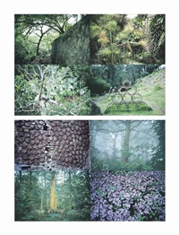 (i) cuatro parques (four parks); (ii) follaje (foliage) (2 works) by gabriel orozco