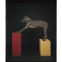 red to yellow by william wegman