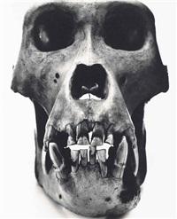 gorilla (male), prague by irving penn