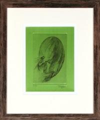 svatokrádežný les by toyen (maria cerminova)