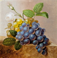 weintrauben und rosen by arnoldus bloemers