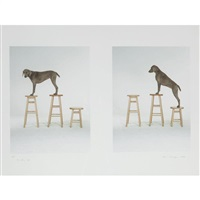 candy up (2 works) by william wegman
