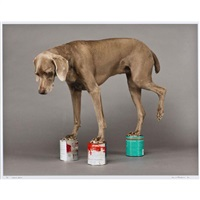 hands docom by william wegman