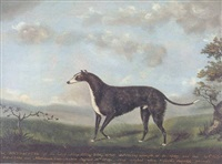 the noted sheep killing dog by john miles of northleach