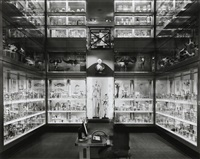 crystal palace, hunterian museum, london, september 25 by matthew pillsbury
