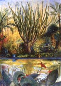 les jardins de majorelle a marrakech (a pair) by dan poncet