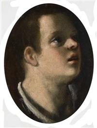 testa di ragazzo by astolfo petrazzi