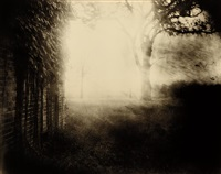 untitled from deep south by sally mann