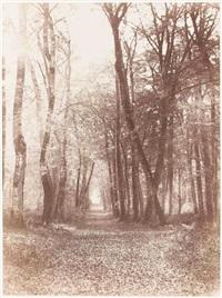 route à briquet, forêt de fontainebleau by eugène cuvelier