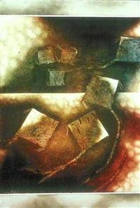 kites by yusuf arakkal
