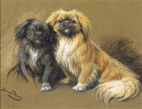 two pekingese by fannie moody