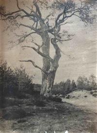 chêne près d'un chemin, forêt de fontainebleau by eugène cuvelier