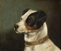 portrait of a jack russell by edward aistrop
