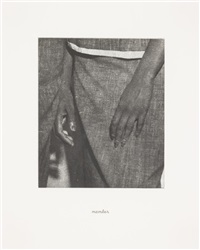 details (portfolio of 21) by lorna simpson