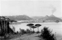 panorama di napoli da posillipo by g. corelli
