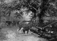 cows on a country road by marvil f. keffer