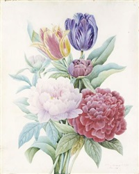 a bouquet of peonies and tulips by comtesse d' aubigny d'afoy