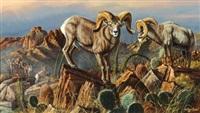 sheep by gary r. swanson