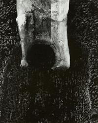 terracotta 13 by aaron siskind
