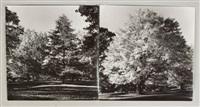 untitled (2 works) by ansel adams