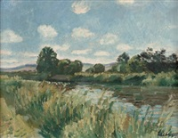 flusslandschaft by georg liebhart