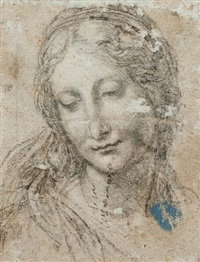 head of a young woman by girolamo mazzola bedoli