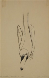 bird calling down a hole by morris graves