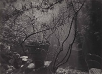 summer shower in the magic garden by josef sudek