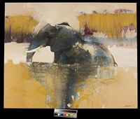chobe river elephant by keith joubert