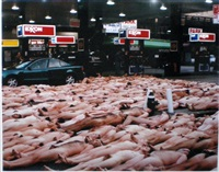 exxon by spencer tunick