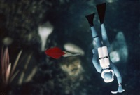 perpendicular diver/red fish by laurie simmons