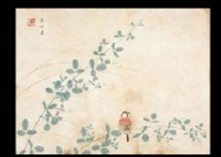 sparrow by kayo yamaguchi