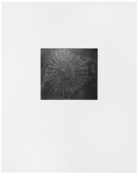 untitled (web 1) (from the moca portfolio) by vija celmins