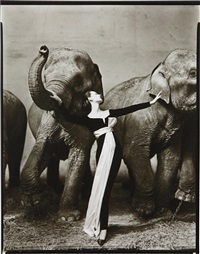 dovima with elephants, evening dress by dior, cirque d'hiver, paris by richard avedon