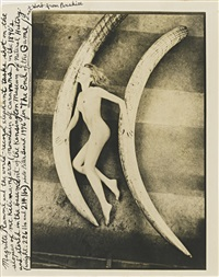 magritte rammé with world record elephant tusks by peter beard
