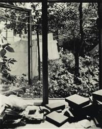 from the window of my atelier by josef sudek