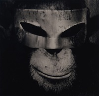 monkey with mask by albert watson