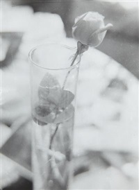 rose in glass by josef sudek