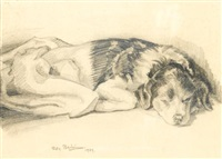 sleeping puppy by sven berlin