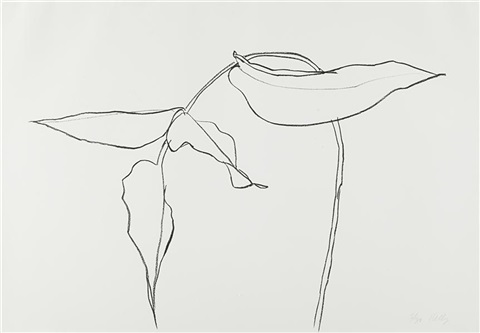 philodendron ii from series of plant and flower lithographs by ellsworth kelly