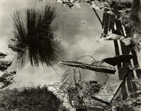 pond, meyer's ranch, yosemite by edward weston