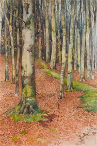a forest path in autumn by noel laura bush