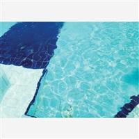 a piscina by adriana varejão