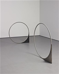 untitled (forcefield) (in 2 parts) by nicole wermers