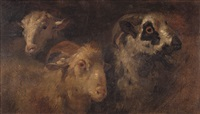 studi di animali by francesco londonio