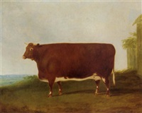 a prize heifer by g. b. newmarch