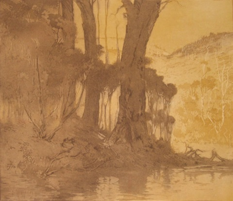 banks of the blackwood by henri van raalte