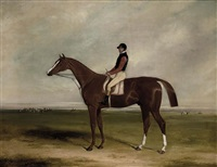 elis with jockey up by william barraud