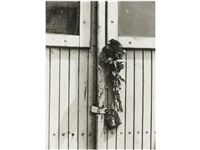 dry flowers on door by tibor honty