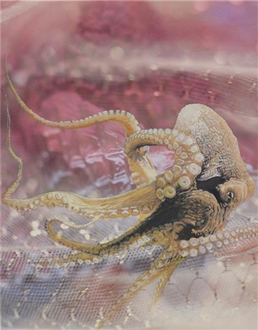 untitled octopus by jim shaw
